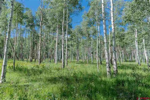 Photo of 4C Spruce Mountain Lane, Ridgway, CO 81432 (MLS # 773135)
