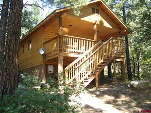 Photo for 1516 Cty Rd 17, Ridgway, CO 81432 (MLS # 737140)