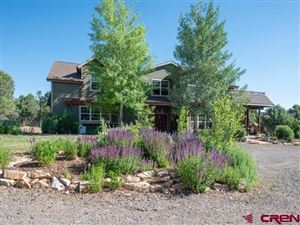 Photo of 440 OAK Road, Ridgway, CO 81432 (MLS # 744142)