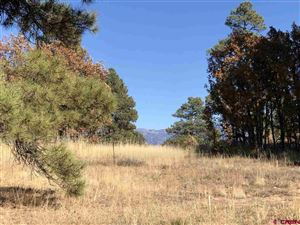 Photo of 940 CR 600, Pagosa Springs, CO 81147 (MLS # 764144)