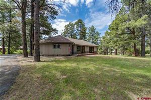 Photo of 263 Pines Drive, Pagosa Springs, CO 81147 (MLS # 759151)