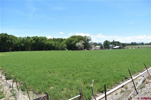 Photo of 2988 Old Wagon Road, Delta, CO 81416 (MLS # 770172)