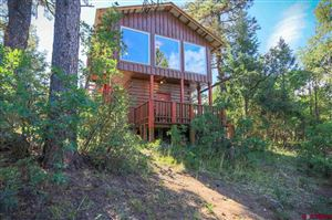 Photo of 134 Maple Glen Place, Pagosa Springs, CO 81147 (MLS # 760176)