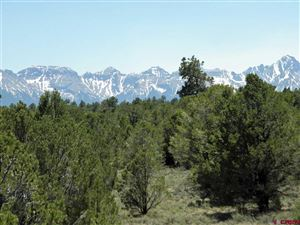 Photo of 194 Fisher Canyon Drive, Ridgway, CO 81432 (MLS # 746179)