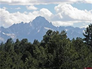 Photo of 204 Fisher Canyon Drive, Ridgway, CO 81432 (MLS # 746182)