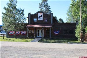 Photo of 120 County Road 600 Road, Pagosa Springs, CO 81147 (MLS # 760187)