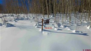 Photo of 726 Prospect Drive, Mt. Crested Butte, CO 81225 (MLS # 1188)