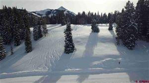 Photo of 723 Prospect Drive, Mt. Crested Butte, CO 81225 (MLS # 1190)