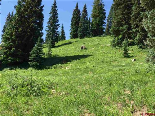 Photo of 310 7th Street, Crested Butte, CO 81224 (MLS # 770203)