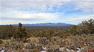 Tiny photo for TBD Road 35 Lot 111, Mancos, CO 81328 (MLS # 753207)