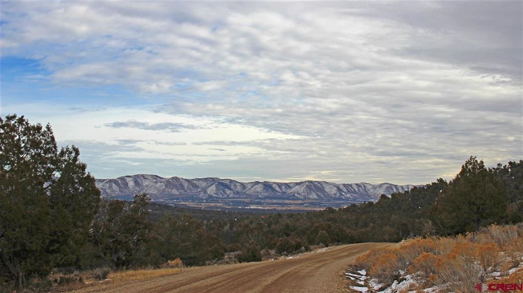 Photo for TBD Road 35 Lot 111, Mancos, CO 81328 (MLS # 753207)