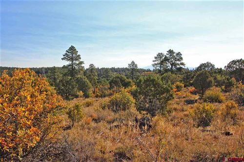 Photo of 31550 Road V.2, Dolores, CO 81323 (MLS # 775217)