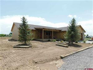 Photo of 8352 2000 Road, Austin, CO 81410 (MLS # 754218)