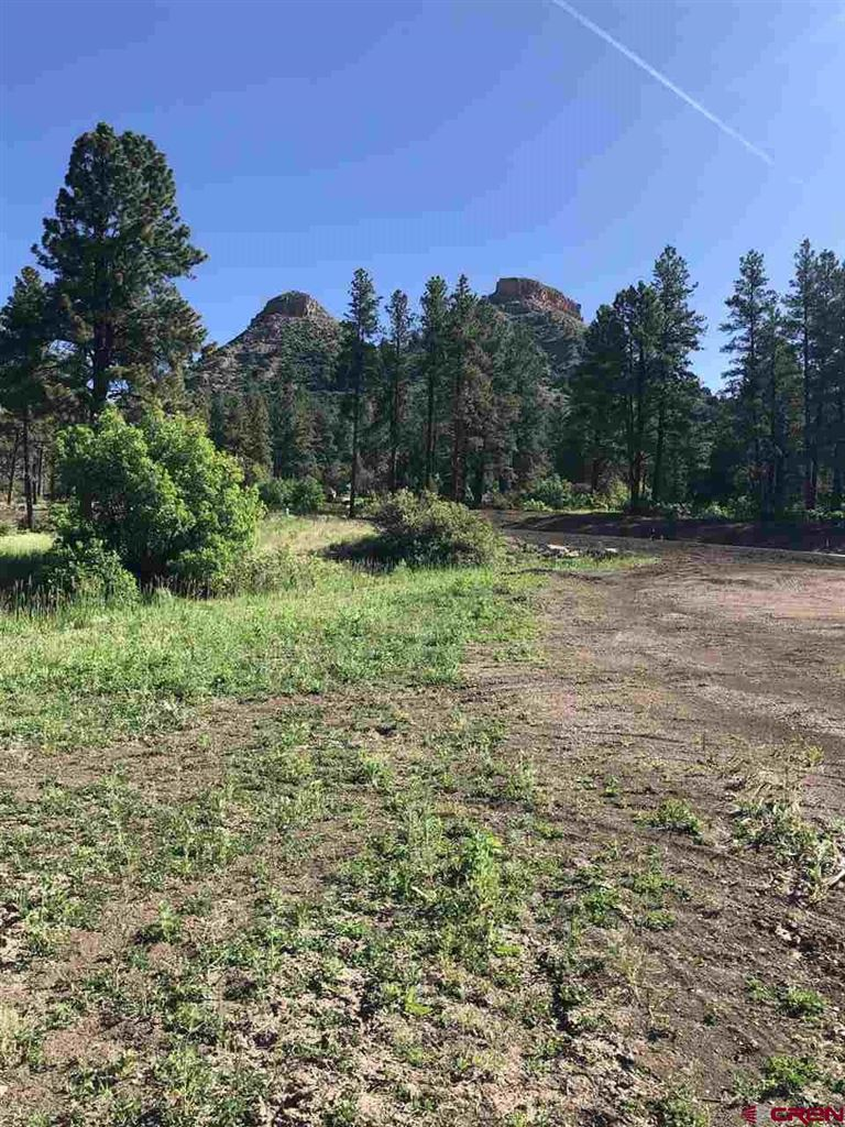 Photo of (Lot 53)  41 Wild iris Avenue, Durango, CO 81301 (MLS # 759219)
