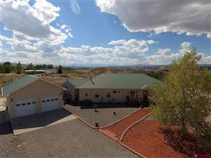 Photo of 17530 Patti Court, Montrose, CO 81401 (MLS # 749223)