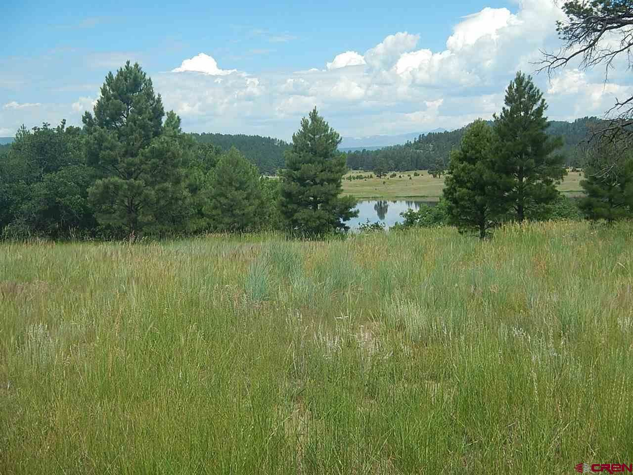 Photo of 1481 Stevens Lake Road, Pagosa Springs, CO 81147 (MLS # 761224)