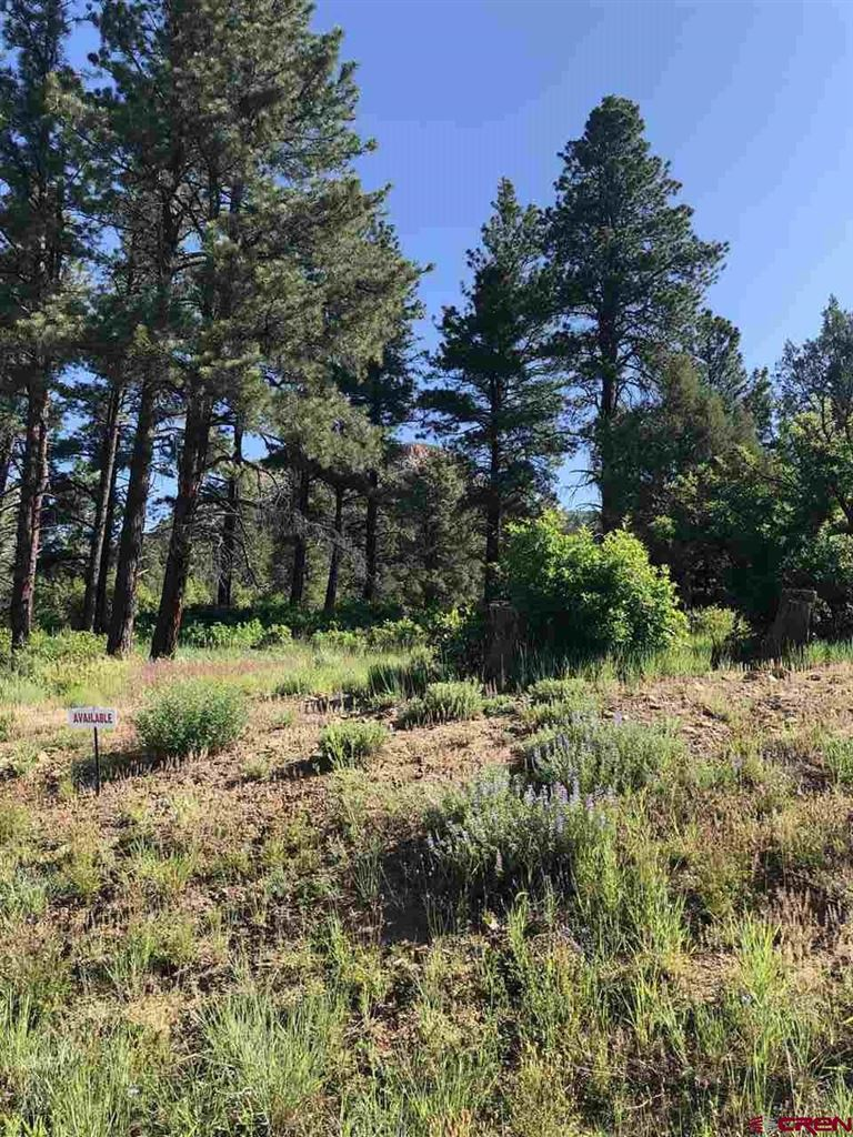 Photo of (Lot 27) 122 Wood Rose Lane, Durango, CO 81301 (MLS # 759228)