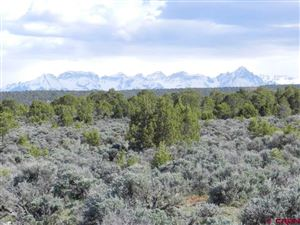 Photo of TBD Happy Canyon, Montrose, CO 81403 (MLS # 736245)