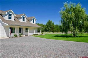 Photo of 22045 Cliff View Road, Delta, CO 81416 (MLS # 761247)
