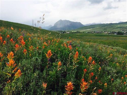 Photo of tbd 135 Hwy, Crested Butte, CO 81224 (MLS # 777256)