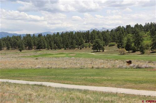 Photo of 294 Marmot Drive, Ridgway, CO 81432 (MLS # 770257)