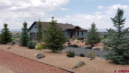 Photo of 8341 2085 Road, Austin, CO 81410 (MLS # 769269)