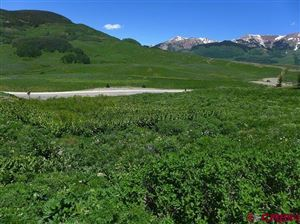 Photo of 924 Gothic Road, Mt. Crested Butte, CO 81225 (MLS # 750276)