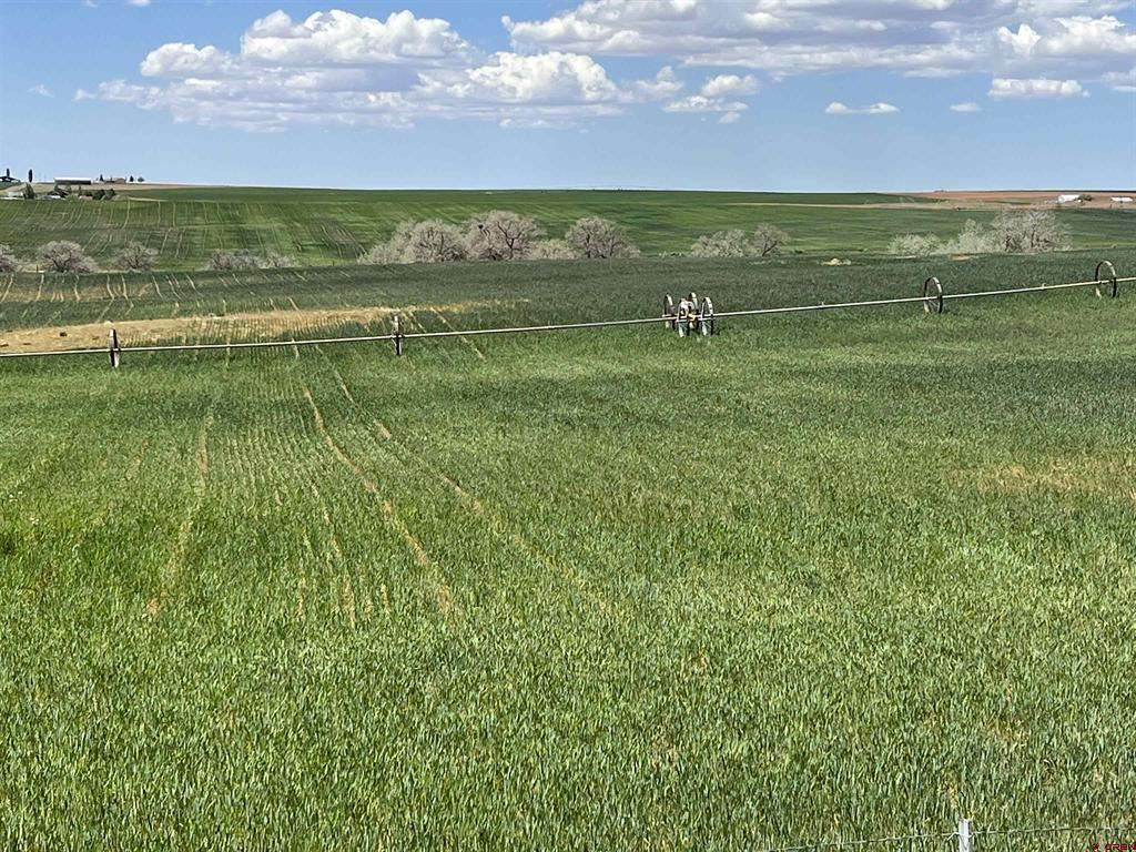 Photo for TBD Road 18, Yellow Jacket, CO 81335 (MLS # 787282)