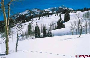 Photo of 605 Prospect Drive, Mt. Crested Butte, CO 81225 (MLS # 3294)