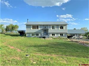 Photo of 17028 Shirl Lane, Cedaredge, CO 81413 (MLS # 759303)