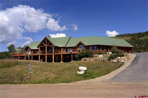 Photo of 251 Neville Way, Crested Butte, CO 81224 (MLS # 762306)