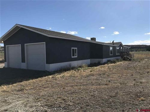 Photo of 67320 Trout Road, Montrose, CO 81403 (MLS # 773314)
