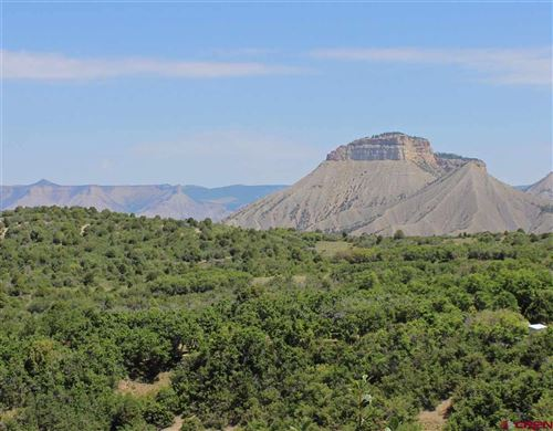 Tiny photo for TBD Road 29, Cahone, CO 81324 (MLS # 774317)