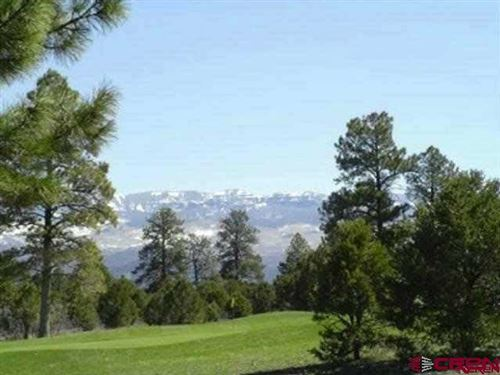 Photo of 1368 Marmot Drive, Ridgway, CO 81432 (MLS # 753320)