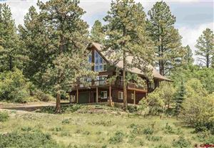 Photo of 628 Buck Drive, Pagosa Springs, CO 81147 (MLS # 759329)