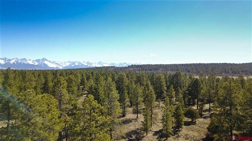 Photo of 74 Fisher Creek Drive, Ridgway, CO 81432 (MLS # 768339)