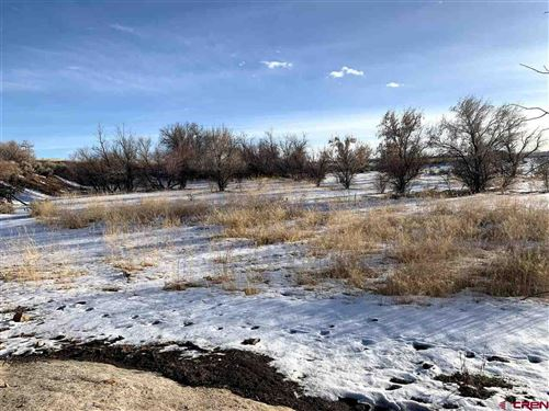 Tiny photo for TBD Road AA, Pleasant View, CO 81331 (MLS # 775339)