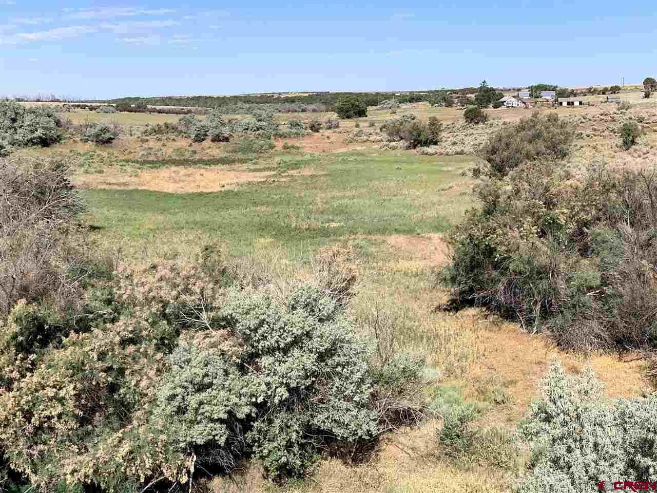 Photo for TBD Road AA, Pleasant View, CO 81331 (MLS # 775339)