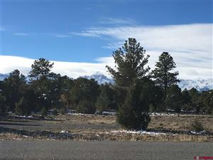 Photo of 845 Ponderosa Drive, Ridgway, CO 81432 (MLS # 752353)