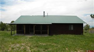 Photo of 10051 Sims Mesa Road, Montrose, CO 81403 (MLS # 762359)