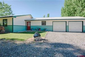 Photo of 60774 Hillsdale Dr, Montrose, CO 81403 (MLS # 753378)