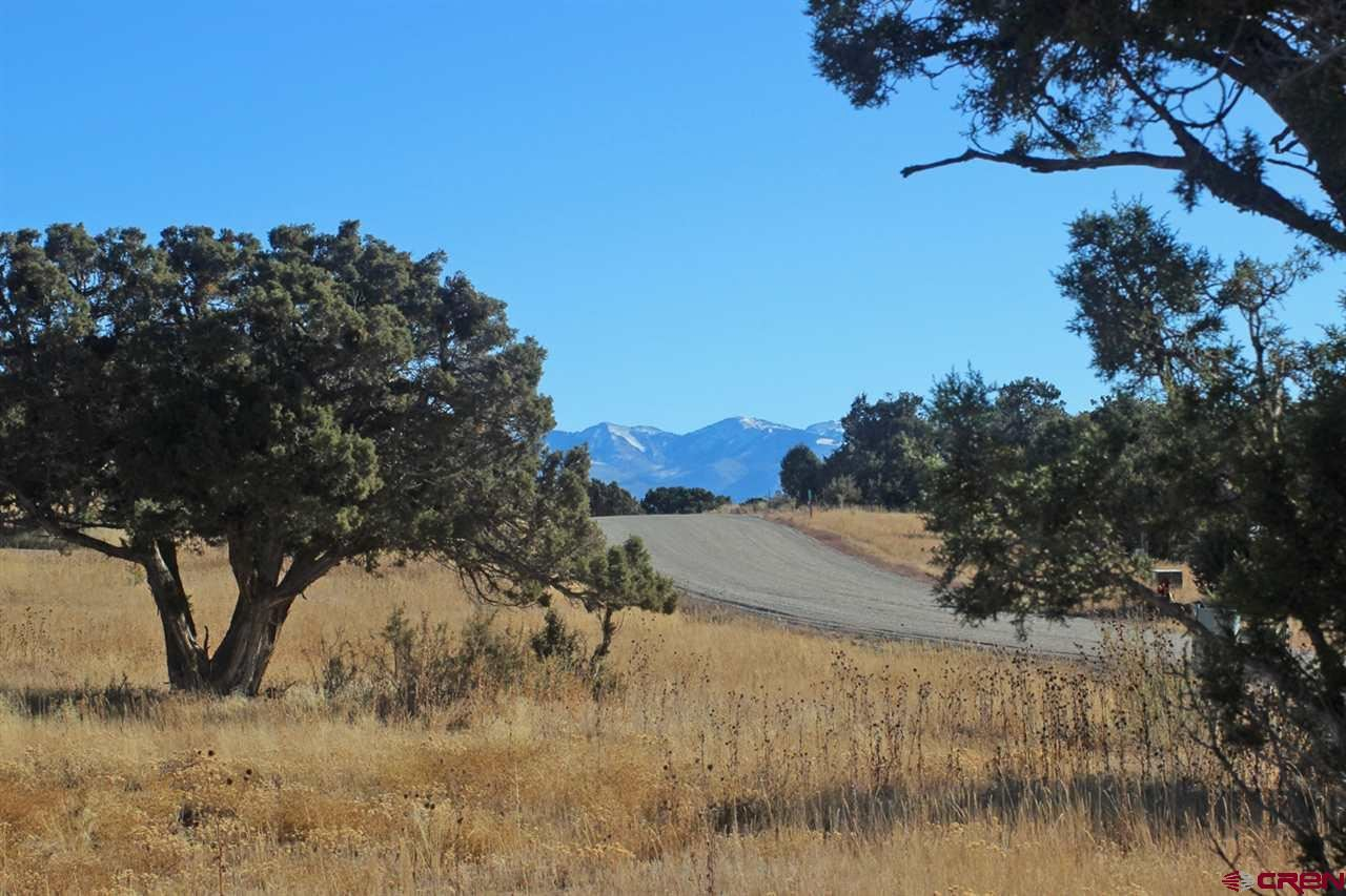 Photo for 9627 Road 35, Mancos, CO 81328 (MLS # 764382)