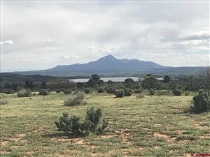 Photo of 24999 Road X, Dolores, CO 81323 (MLS # 757388)