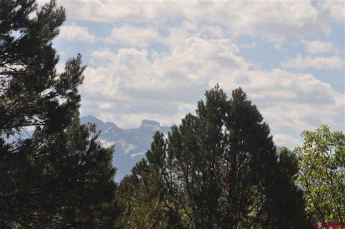 Photo of 935 Marmot Drive, Ridgway, CO 81432 (MLS # 770411)