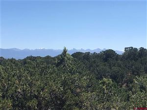 Photo of TBD Bible Camp Road, Ridgway, CO 81432 (MLS # 762414)