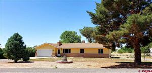 Photo of 12373 W Spring Circle, Eckert, CO 81418 (MLS # 762416)