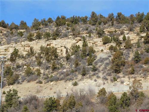 Tiny photo for 201 N 14th Street, Dolores, CO 81323 (MLS # 777419)