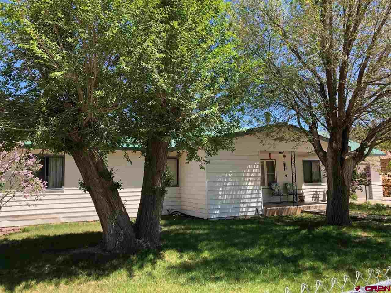 Photo for 201 N 14th Street, Dolores, CO 81323 (MLS # 777419)