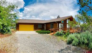 Photo of 18102 2325 Road, Cedaredge, CO 81413 (MLS # 759424)