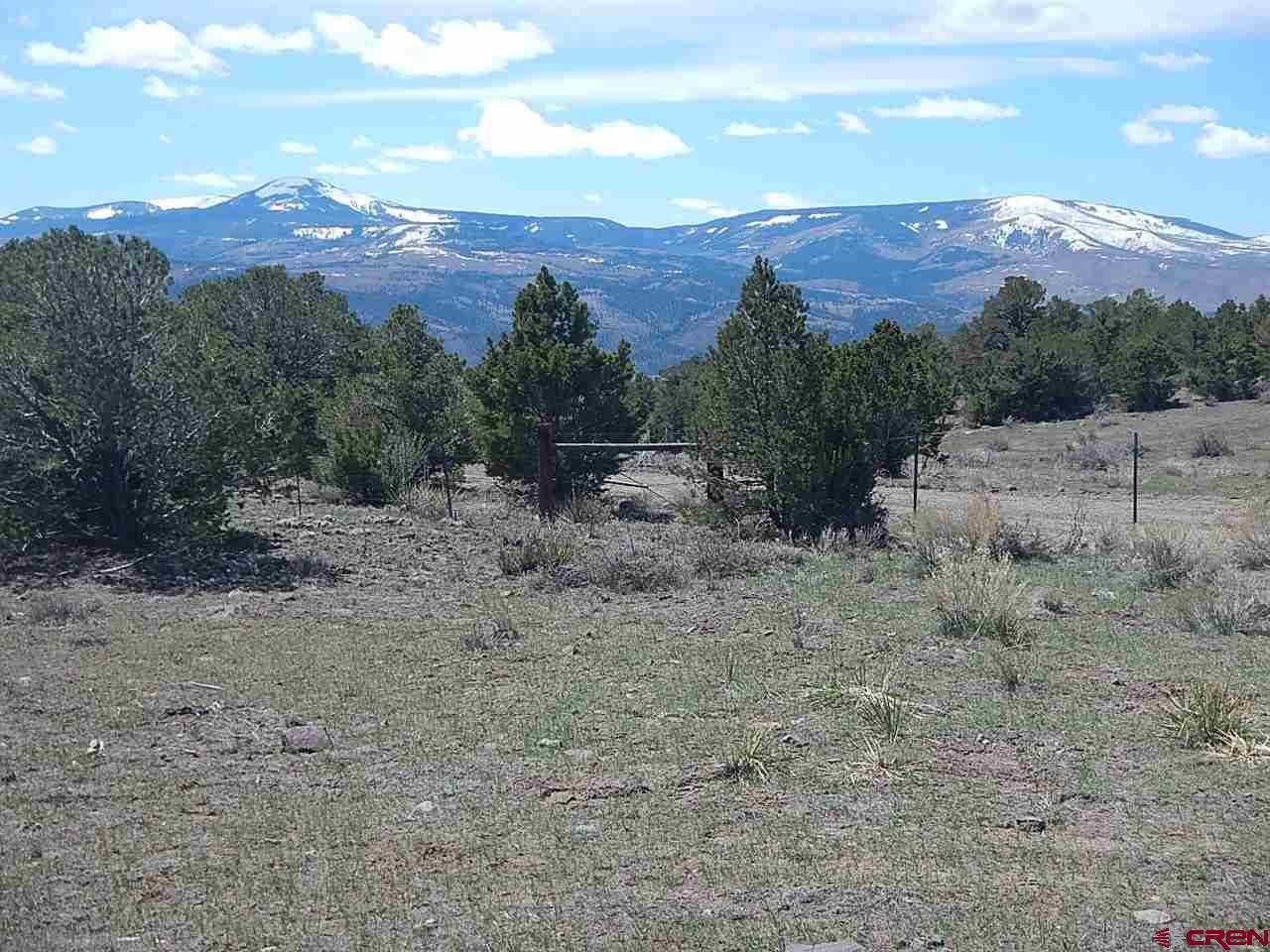 Photo of 232 Aspen Springs, South Fork, CO 81154 (MLS # 757424)